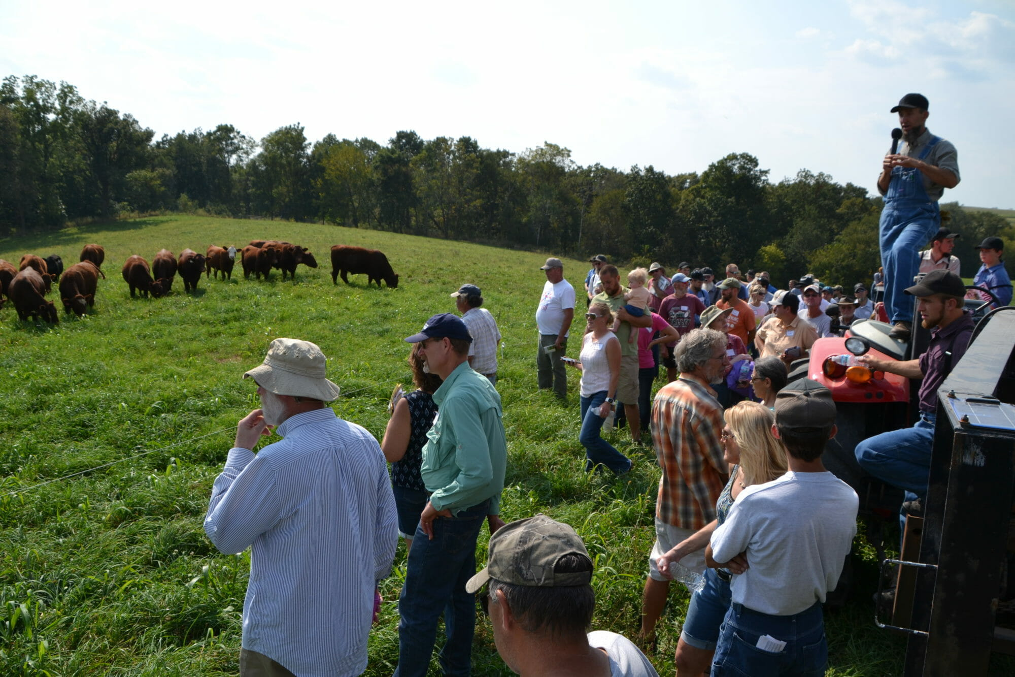 Jamie (above) speaks field day attendees about roational grazing.